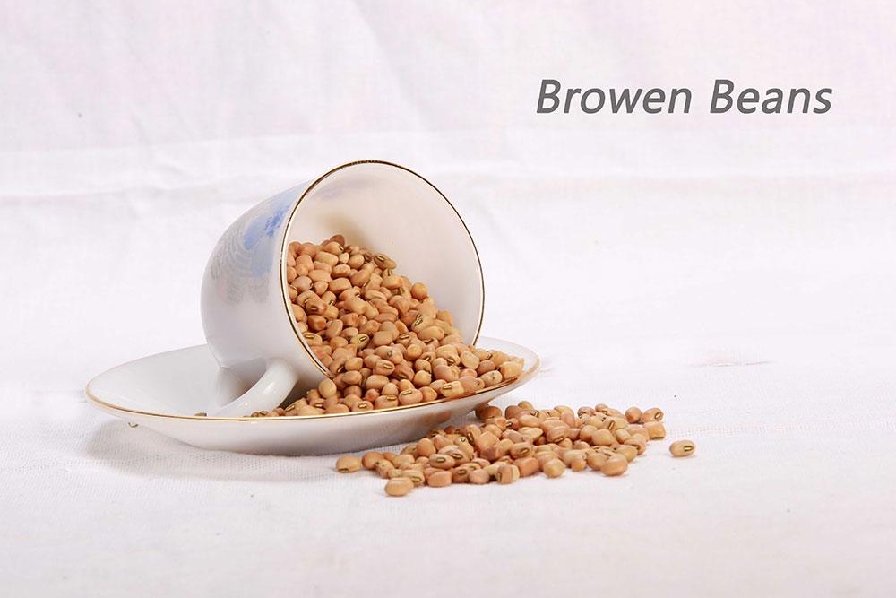 Browen-Beans-1