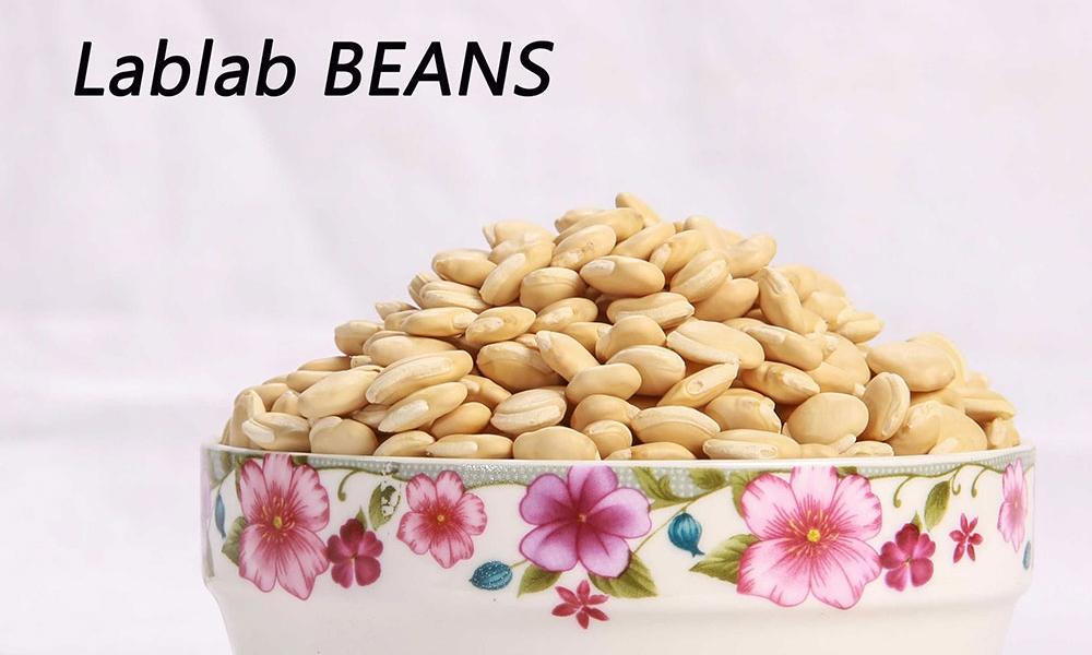 Lablab-Beans-01