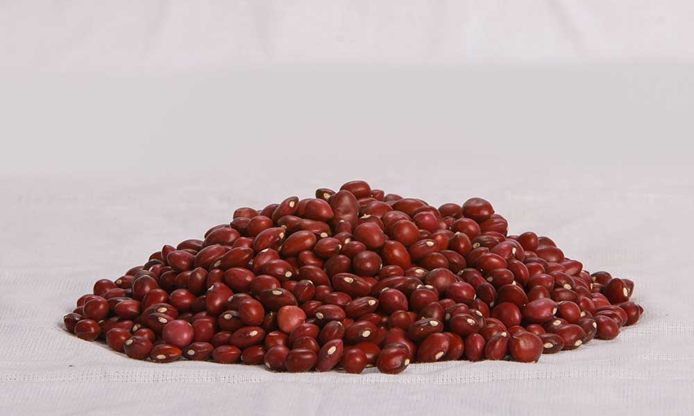 Sultani-(Velvet-Beans)2