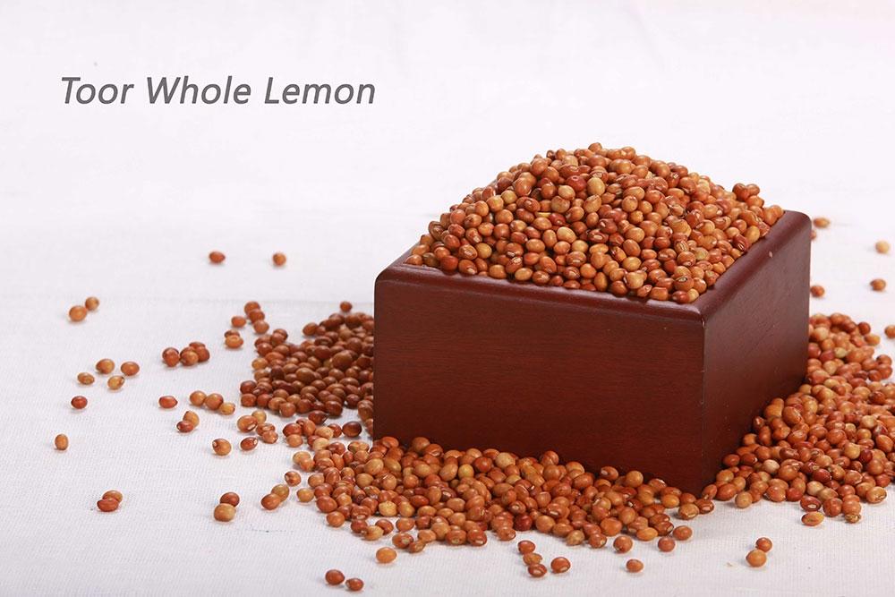 Toor-Whole-Lemon-1