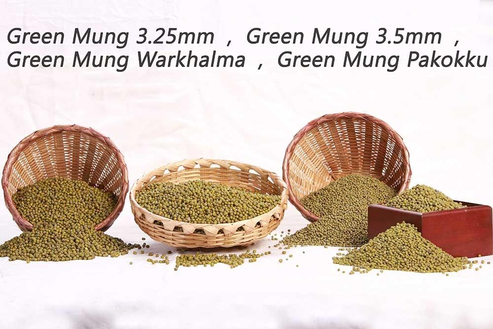 green_moong_01