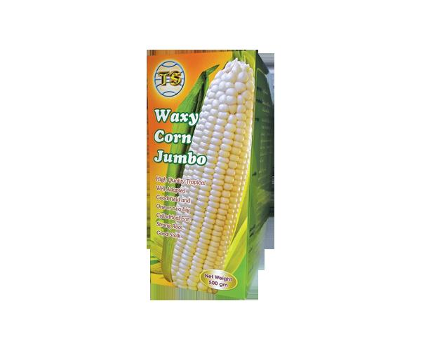 waxy-corn-jumbo
