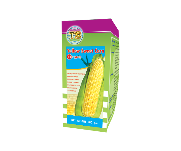 yellow-sweet-corn